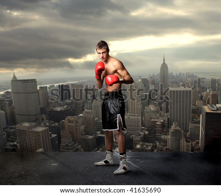 young boxer on the top of new york city - stock photo