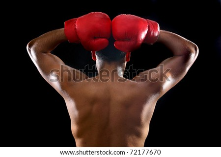 young boxer put his hands above head back view - stock photo