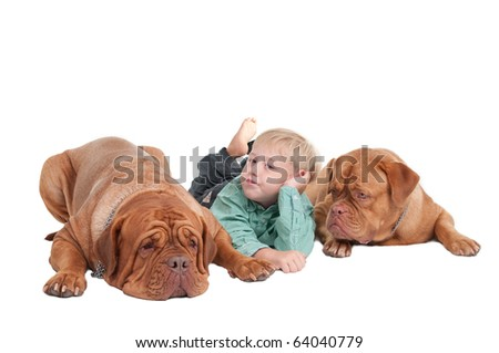 Young boy and two big dogs lying on the floor - stock photo