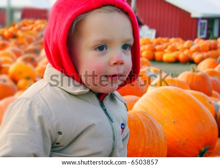 Young boy at a barn, pumpkins in the background, fall scene, rosy cheeks - stock photo