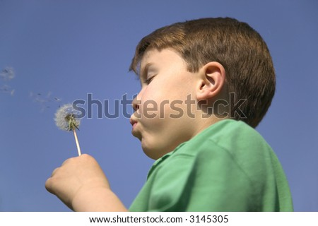 Young boy blowing the seeds from a dandelion