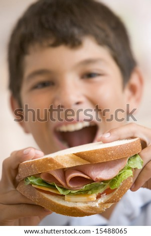 Young boy eating sandwich smiling - stock photo