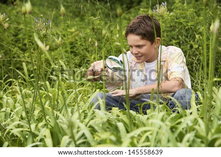 Young boy examining plants with a magnifying glass in forest - stock photo