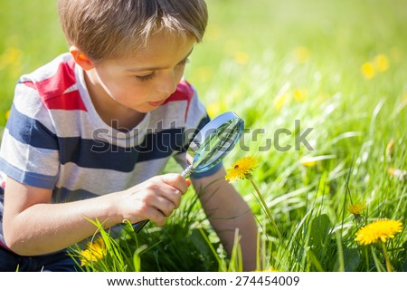 Young boy exploring nature in a meadow with a magnifying glass looking at a ladybird - stock photo