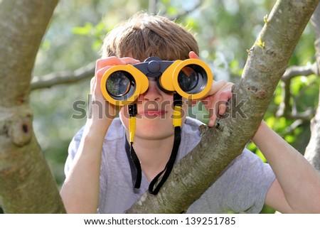 Young boy in a tree looking through binoculars - stock photo