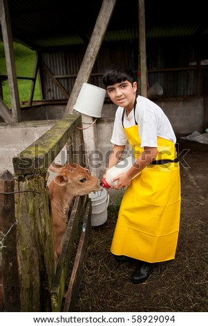 Young boy in apron working on Costa Rican dairy farm - stock photo