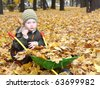 Young boy in the autumn park - stock photo