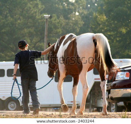 Young boy leading his horse - stock photo