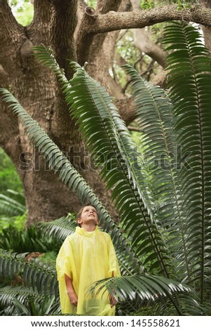 Young boy looking at large fern in forest during field trip - stock photo