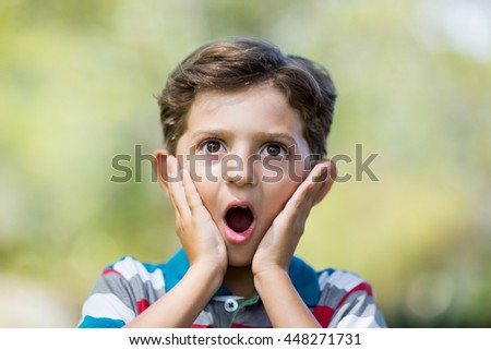Young boy making surprise expression while pulling out funny faces in park - stock photo