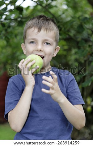 Young boy picking and eating fresh apples from a tree - stock photo