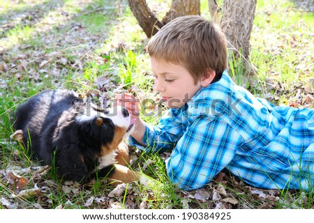 Young boy with his Bernese Mountain Dog puppy - stock photo
