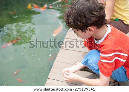 Young boy with sister feeding ornamental koi carp fish in a pond. - stock photo
