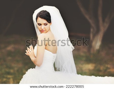 Young brunette bride on wedding day. - stock photo