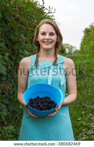 Young brunette woman in blue dress picking blackberries outdoors - stock photo