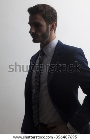 Young business man in back lighting / silhouette - stock photo