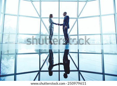Young business partners handshaking after making agreement - stock photo