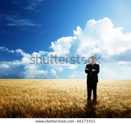 young businessman on yellow wheat field - stock photo
