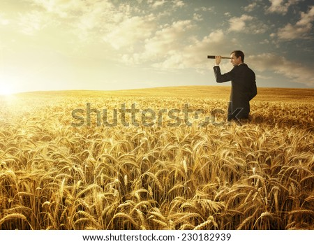 Young businessman with the spyglass in the wheat field searching for the new opportunities - stock photo