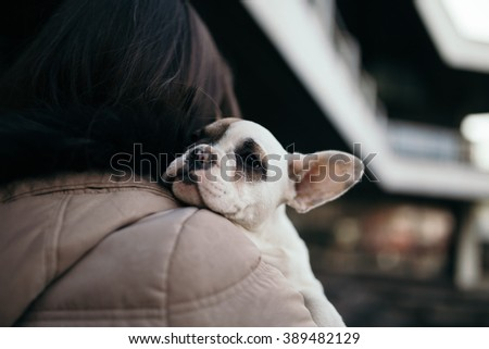 Young casually dressed woman holding her adorable French bulldog puppy. Close up shot with wide angle lens. City street in background. Selective focus on dog's head. - stock photo