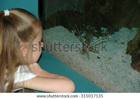 Young caucasian preschool age girl looking at fish through a large glass window - stock photo