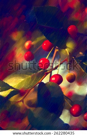 Young cherry grows on a tree - stock photo