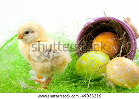 young chick and painted eggs around the bucket - stock photo