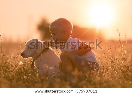 Young Child Boy Training Golden Retriever Puppy Dog in Meadow on Sunny Day - stock photo