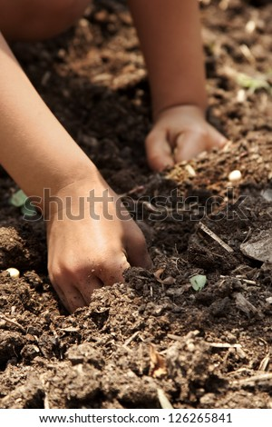 young children planting seeds in garden - stock photo