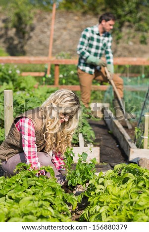 Young couple working in a garden while the sun is shining - stock photo