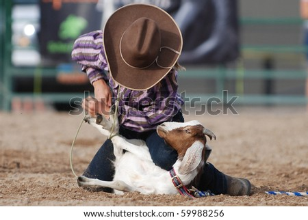 Young cowgirl roping the legs of a goat in a rodeo competition.