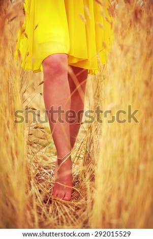 young delicate woman's feet walking through summer wheat field - stock photo