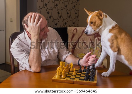 Young dog and mature man discussing capitulation conditions in a chess family tournament - stock photo