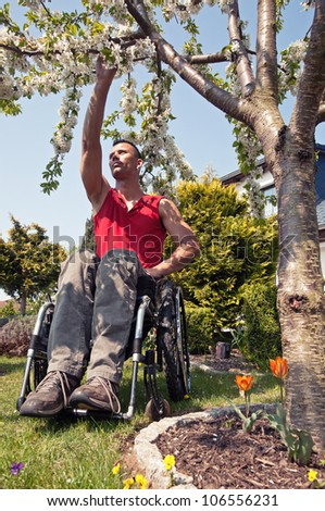 young dynamic wheelchair user in a garden in spring, under a cherry tree