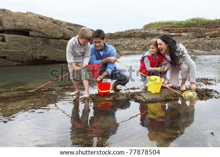 Young family at beach collecting shells - stock photo