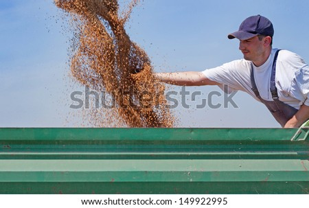 Young farmer checks his wheat flow while combine harvester unloads wheat into tractor trailer. - stock photo