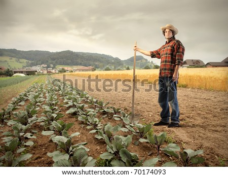 Young farmer standing beside a vegetables growing - stock photo