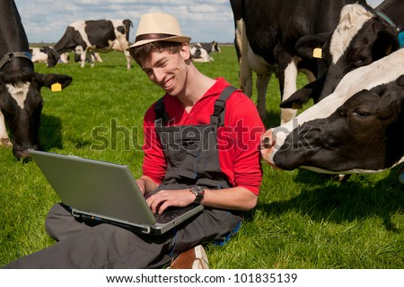 Young farmer working with laptop in farm field with black and white cows