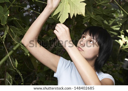 Young female botanist examining leaf in greenhouse - stock photo
