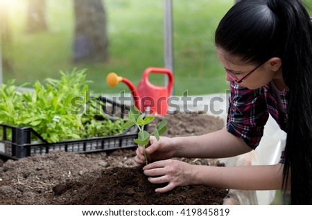 Young female farmer transplanting sprouts in greenhouse