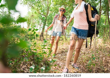 Young female hikers in the forest - stock photo