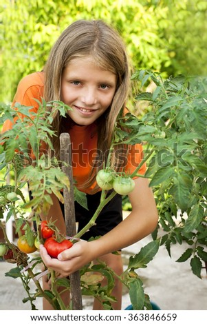young gardener growing tomatoes - stock photo