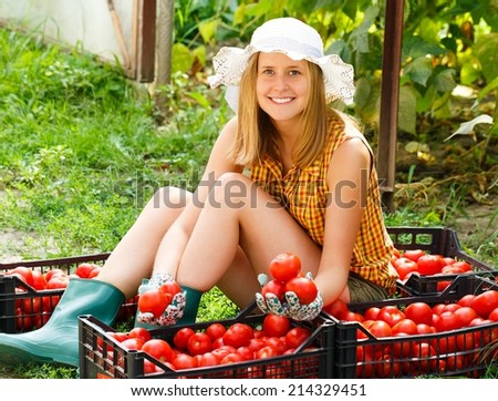 Young gardener sorting the beautiful harvested tomatoes. - stock photo