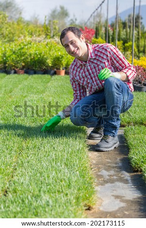 Young Gardener Working at Nursery - stock photo
