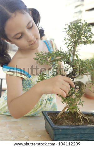 Young girl concentrated in trimming a bonsai tree into shape.