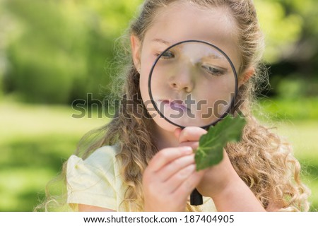Young girl examining a leaf with magnifying glass at the park - stock photo