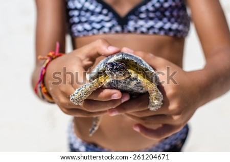 Young girl in patterned swimsuit playing with turtle in hand against the background of tropical white sand beach during her Caribbean vacation in Tulum, Mexico - stock photo