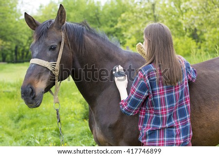 Young girl is grooming brown horse hair - stock photo