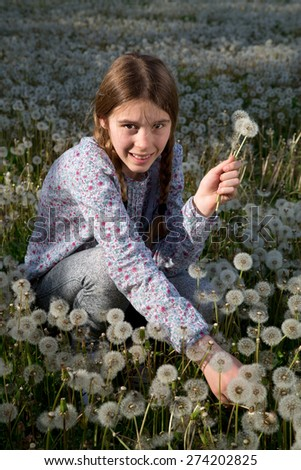 Young Girl Making Bunch of Dandelion Flowers on Dandelion Field on Sunny Spring Day - stock photo