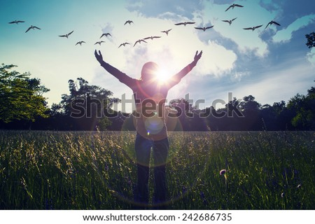 Young girl spreading hands with joy and inspiration facing the sun,sun greeting,freedom concept,bird flying above sign of freedom and liberty - stock photo